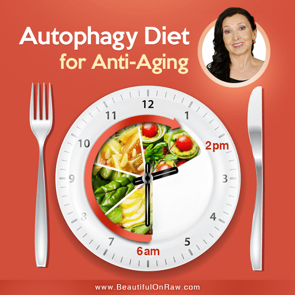 Autophagy Diet for Anti-Aging | Beautiful on Raw