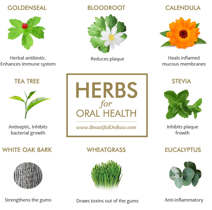 Herbs for Oral Health